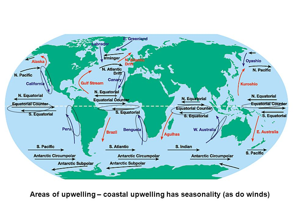 Areas of upwelling – coastal upwelling has seasonality (as do winds)