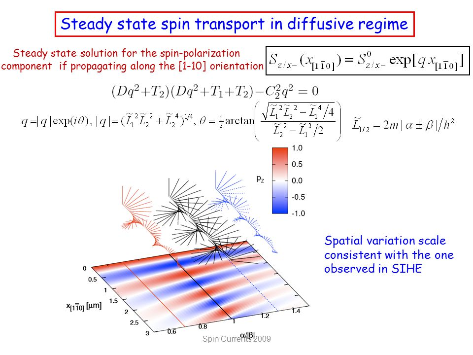 Steady state solution for the spin-polarization component if propagating along the [1-10] orientation Steady state spin transport in diffusive regime Spatial variation scale consistent with the one observed in SIHE Spin Currents 2009