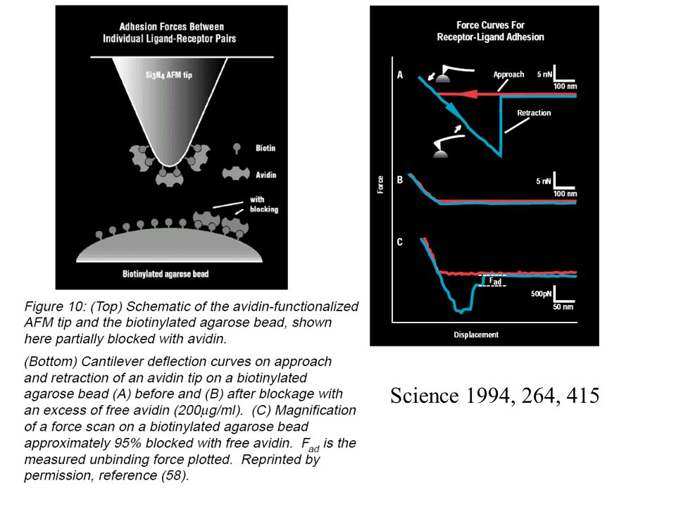 Science 1994, 264, 415