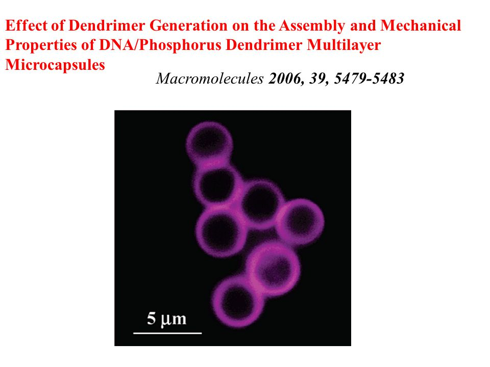 Effect of Dendrimer Generation on the Assembly and Mechanical Properties of DNA/Phosphorus Dendrimer Multilayer Microcapsules Macromolecules 2006, 39,