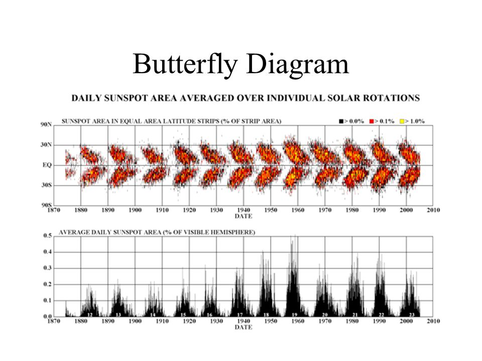 Butterfly Diagram