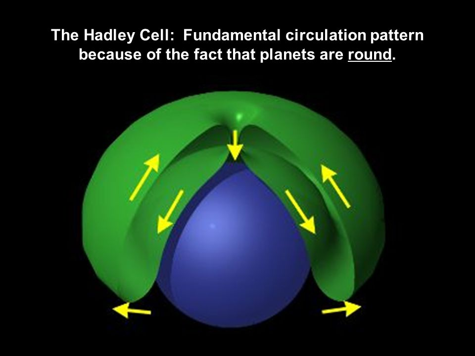 The Hadley Cell: Fundamental circulation pattern because of the fact that planets are round.