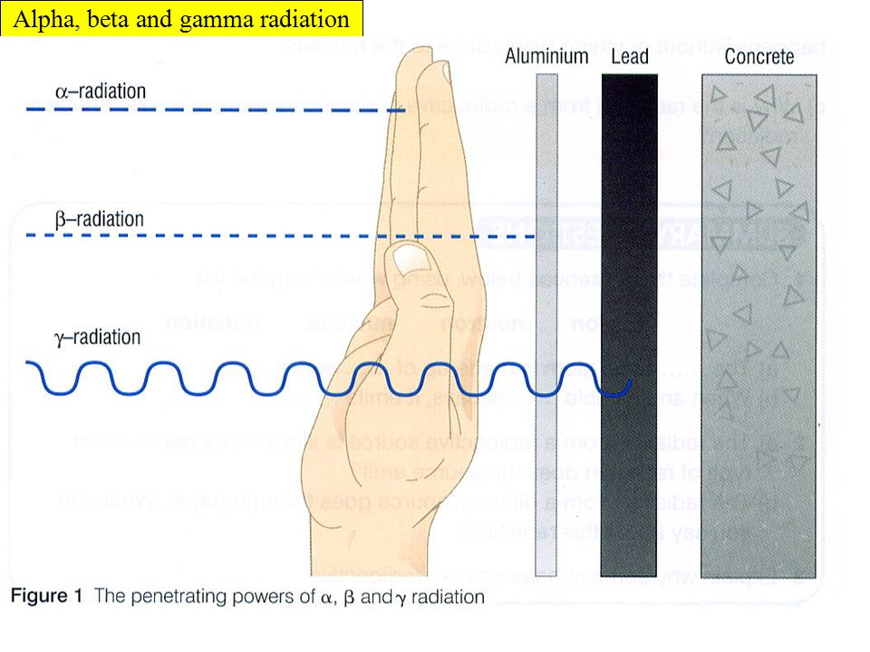 Types of radiation 1) Alpha (  ) – a nucleus decays into a new nucleus and emits an alpha particle (2 protons and 2 neutrons – the nucleus of a helium atom) 2) Beta (  ) – a nucleus decays into a new nucleus by changing a neutron into a proton and electron.