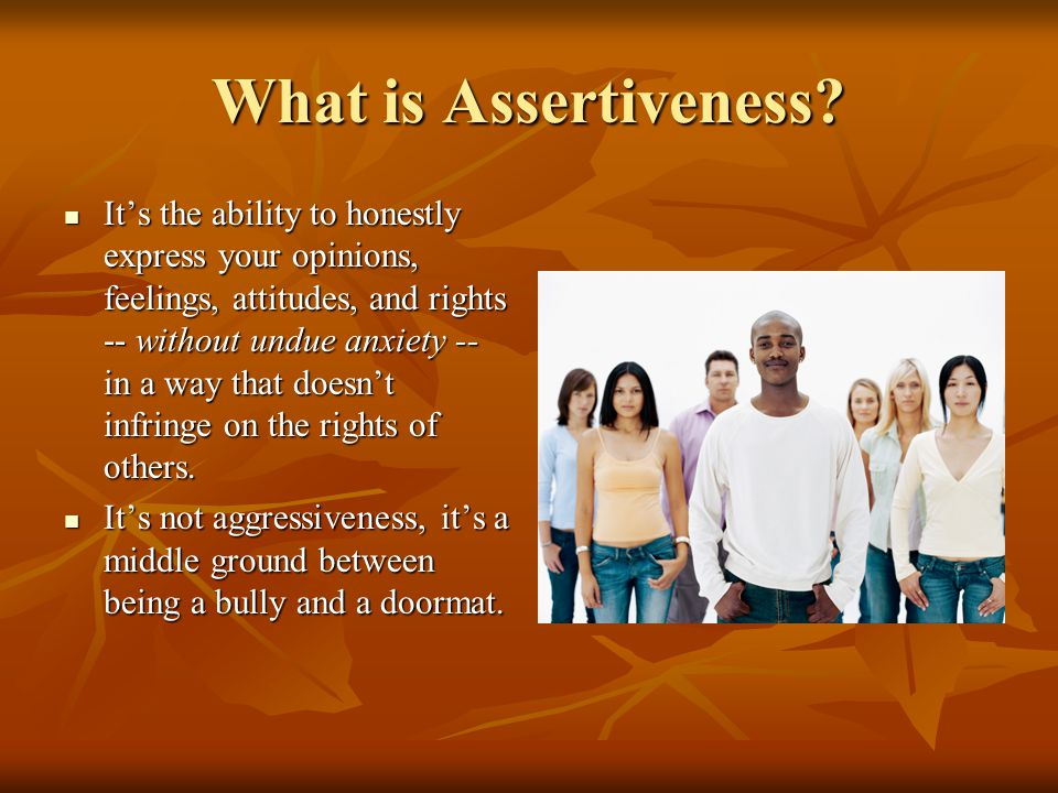 What is Assertiveness.