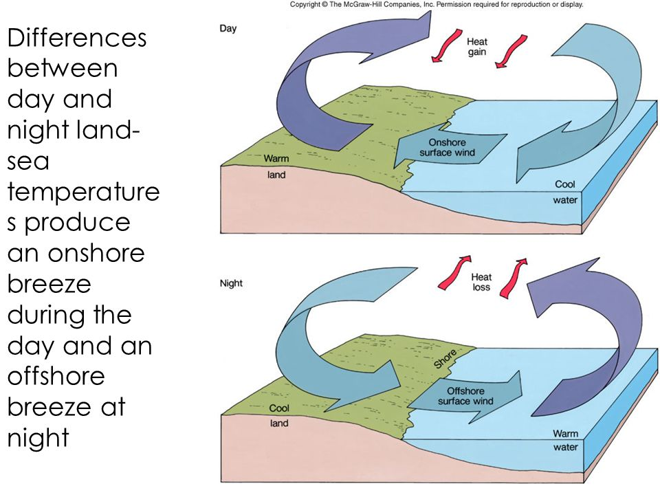 Differences between day and night land- sea temperature s produce an onshore breeze during the day and an offshore breeze at night