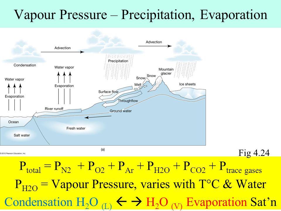 Vapour Pressure – Precipitation, Evaporation P total = P N2 + P O2 + P Ar + P H2O + P CO2 + P trace gases P H2O = Vapour Pressure, varies with T°C & W