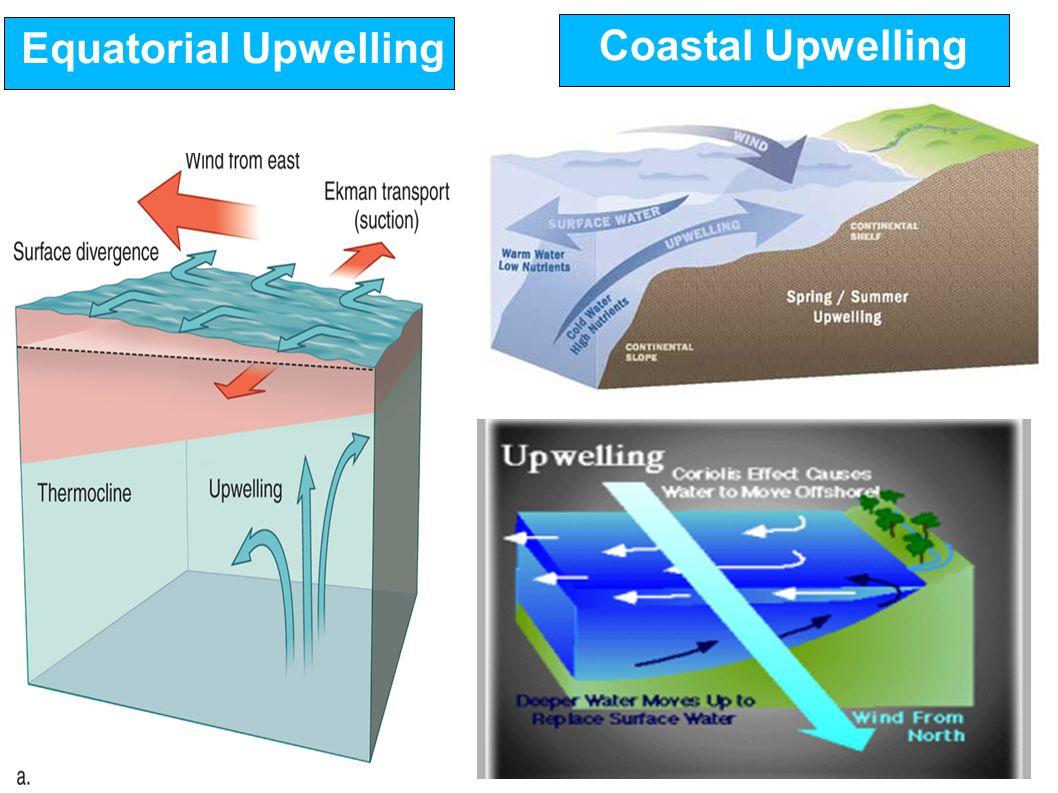 Equatorial Upwelling Coastal Upwelling