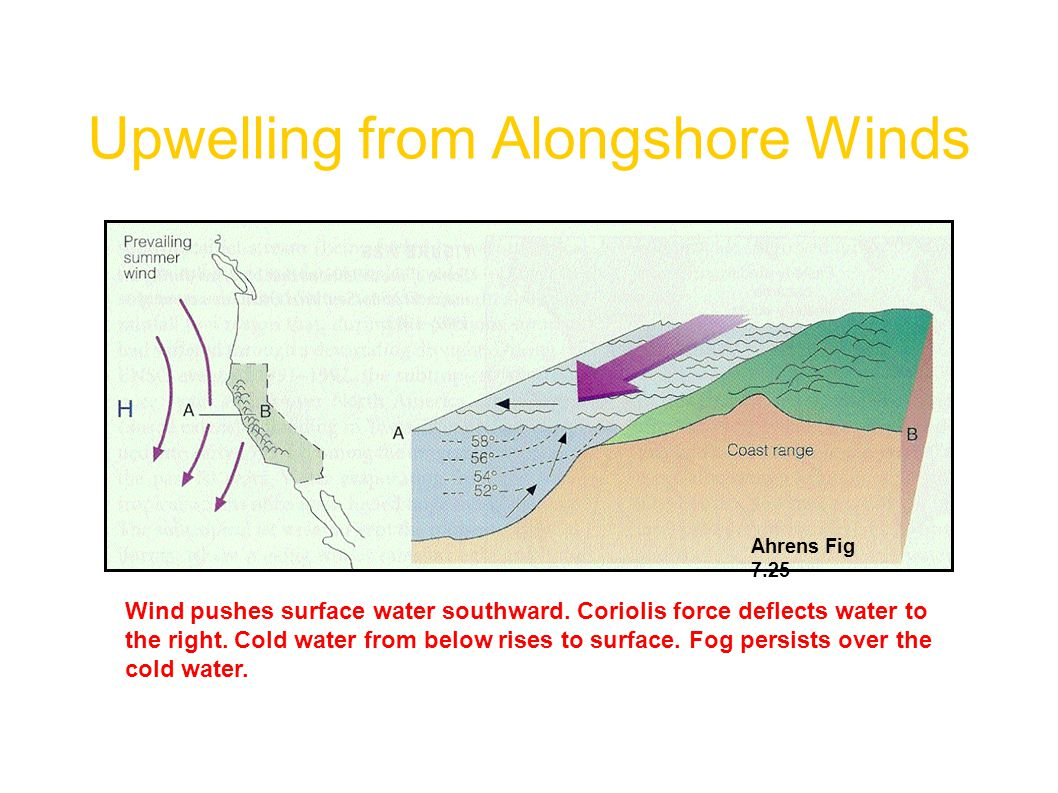 Upwelling from Alongshore Winds Ahrens Fig 7.25 Wind pushes surface water southward. Coriolis force deflects water to the right. Cold water from below