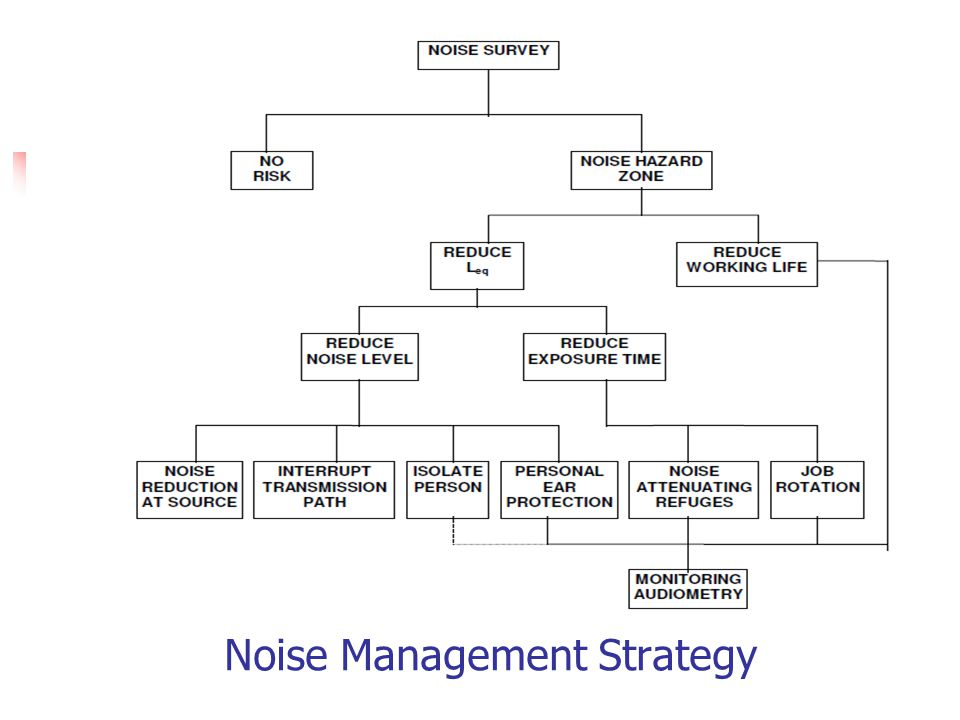 Noise Management Strategy