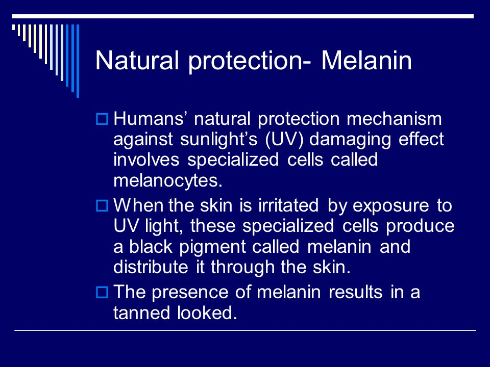 Natural protection- Melanin  Humans' natural protection mechanism against sunlight's (UV) damaging effect involves specialized cells called melanocytes.