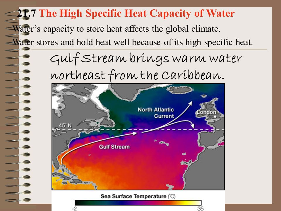 Water's capacity to store heat affects the global climate. Water stores and hold heat well because of its high specific heat. 21.7 The High Specific H