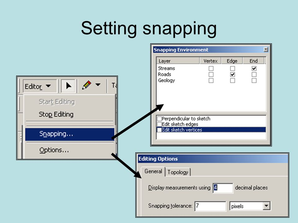 Setting snapping