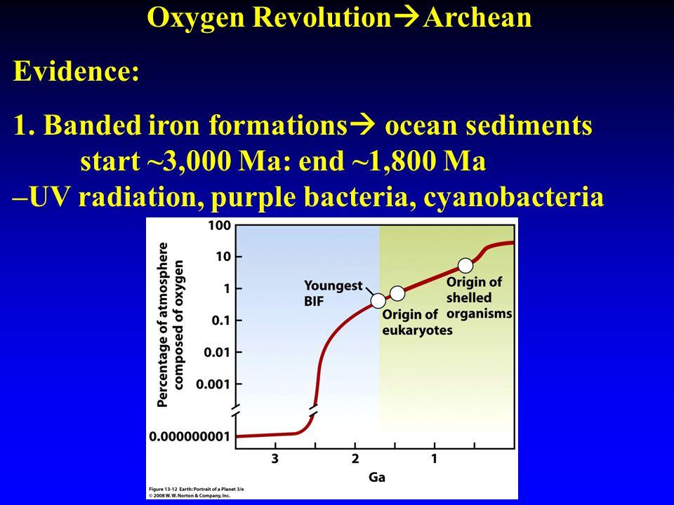 Oxygen Revolution  Archean Evidence: 1. Banded iron formations  ocean sediments start ~3,000 Ma: end ~1,800 Ma –UV radiation, purple bacteria, cyano