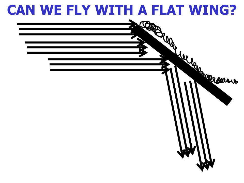 CAN WE FLY WITH A FLAT WING?