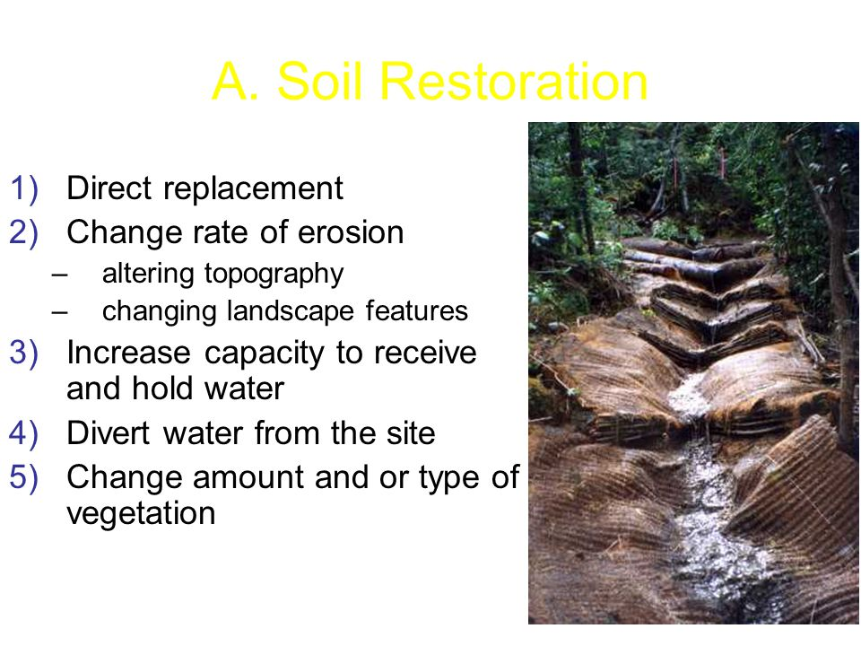 A. Soil Restoration 1)Direct replacement 2)Change rate of erosion –altering topography –changing landscape features 3)Increase capacity to receive and