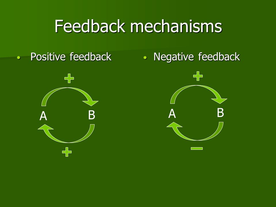 Feedback mechanisms Positive feedback Positive feedback Negative feedback Negative feedback A B A B