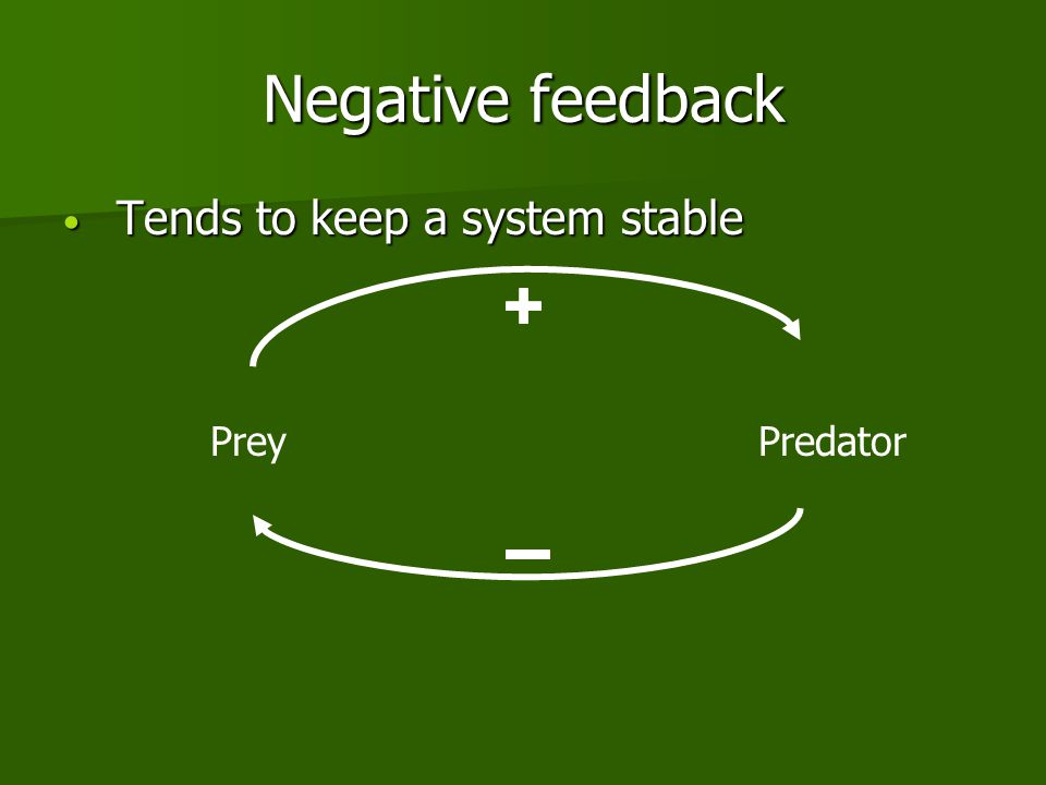 Negative feedback Tends to keep a system stable Tends to keep a system stable PreyPredator