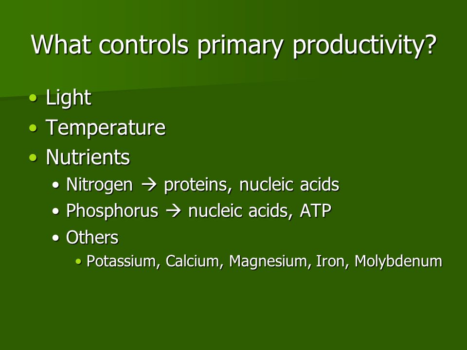 What controls primary productivity.