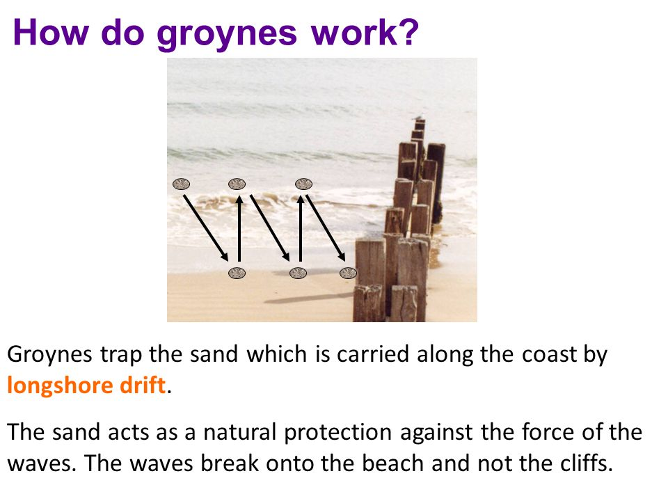 How do groynes work? Groynes trap the sand which is carried along the coast by longshore drift. The sand acts as a natural protection against the forc
