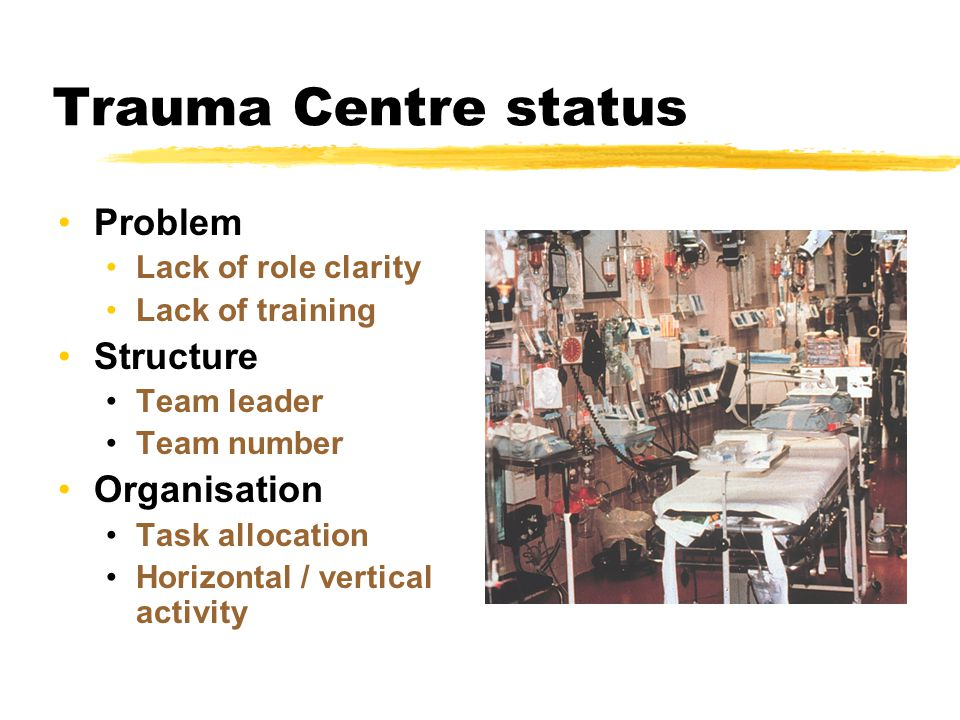 Trauma Centre status Problem Lack of role clarity Lack of training Structure Team leader Team number Organisation Task allocation Horizontal / vertical activity