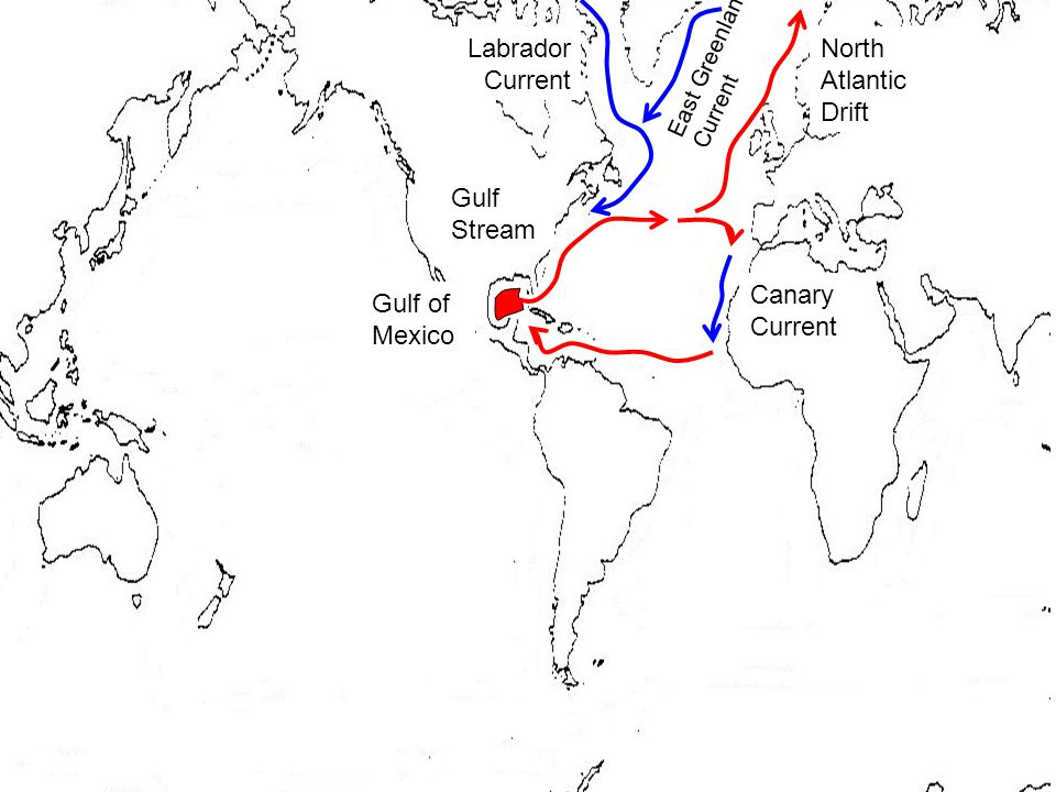 North Atlantic Drift Gulf Stream Canary Current Gulf of Mexico Labrador Current East Greenland Current