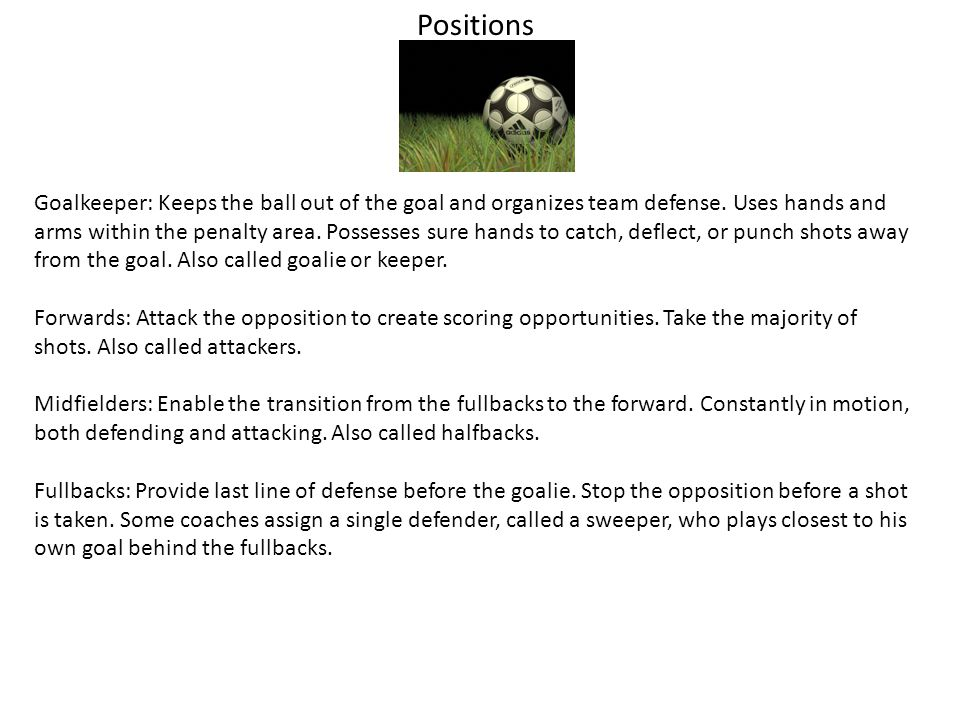 Positions Goalkeeper: Keeps the ball out of the goal and organizes team defense.