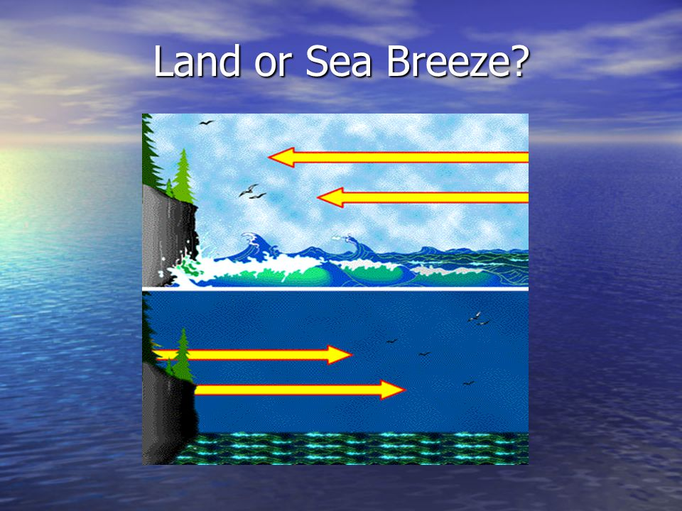 Land or Sea Breeze?