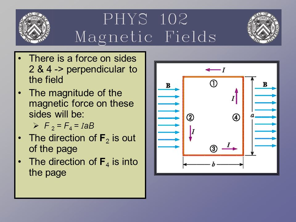 There is a force on sides 2 & 4 -> perpendicular to the field The magnitude of the magnetic force on these sides will be:  F 2 = F 4 = I aB The direc