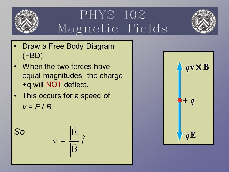 Draw a Free Body Diagram (FBD) When the two forces have equal magnitudes, the charge +q will NOT deflect. This occurs for a speed of v = E / B So