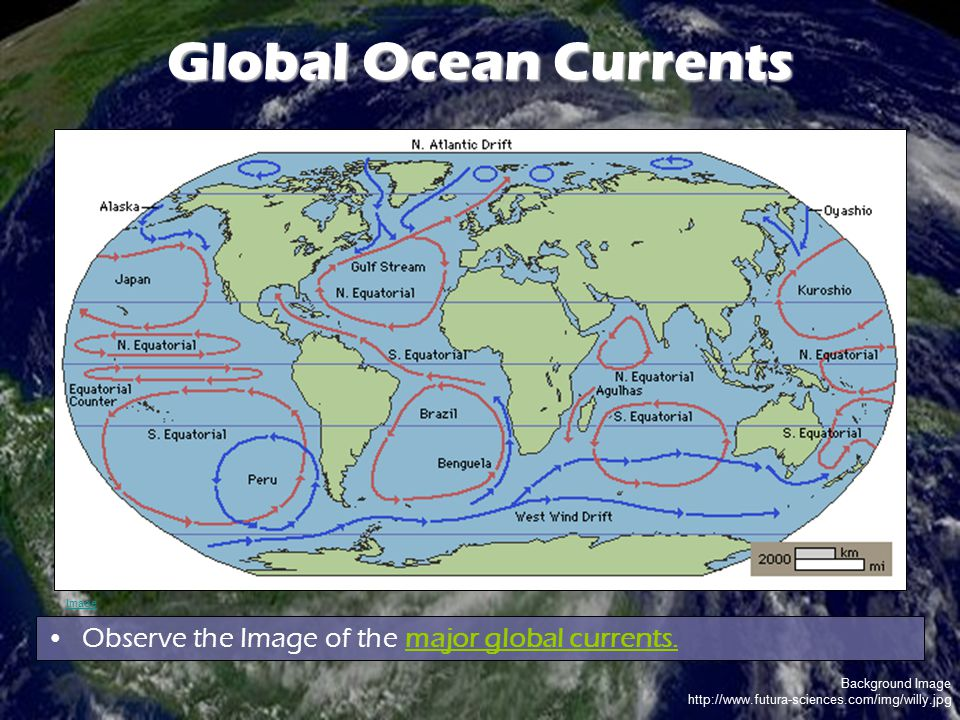 Background Image http://www.futura-sciences.com/img/willy.jpg Global Ocean Currents Observe the Image of the major global currents. Image