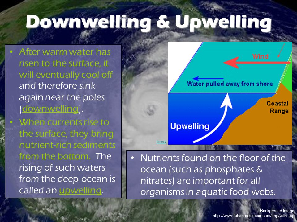 Background Image http://www.futura-sciences.com/img/willy.jpg Downwelling & Upwelling After warm water has risen to the surface, it will eventually co
