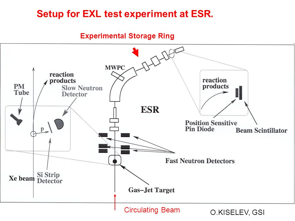 O.KISELEV, GSI Setup for EXL test experiment at ESR. Experimental Storage Ring Circulating Beam