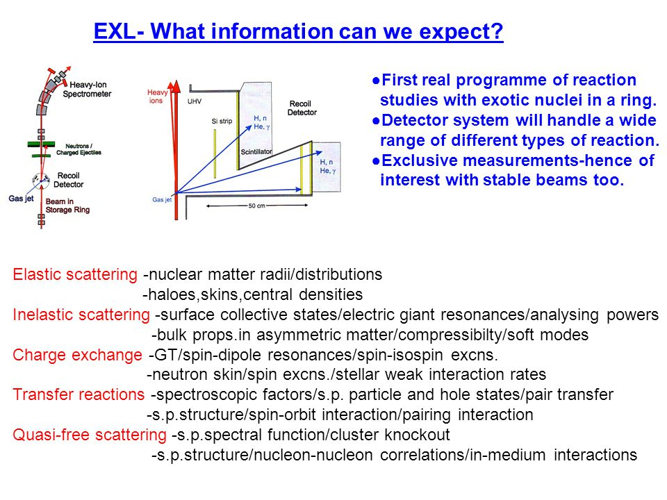 EXL- What information can we expect.