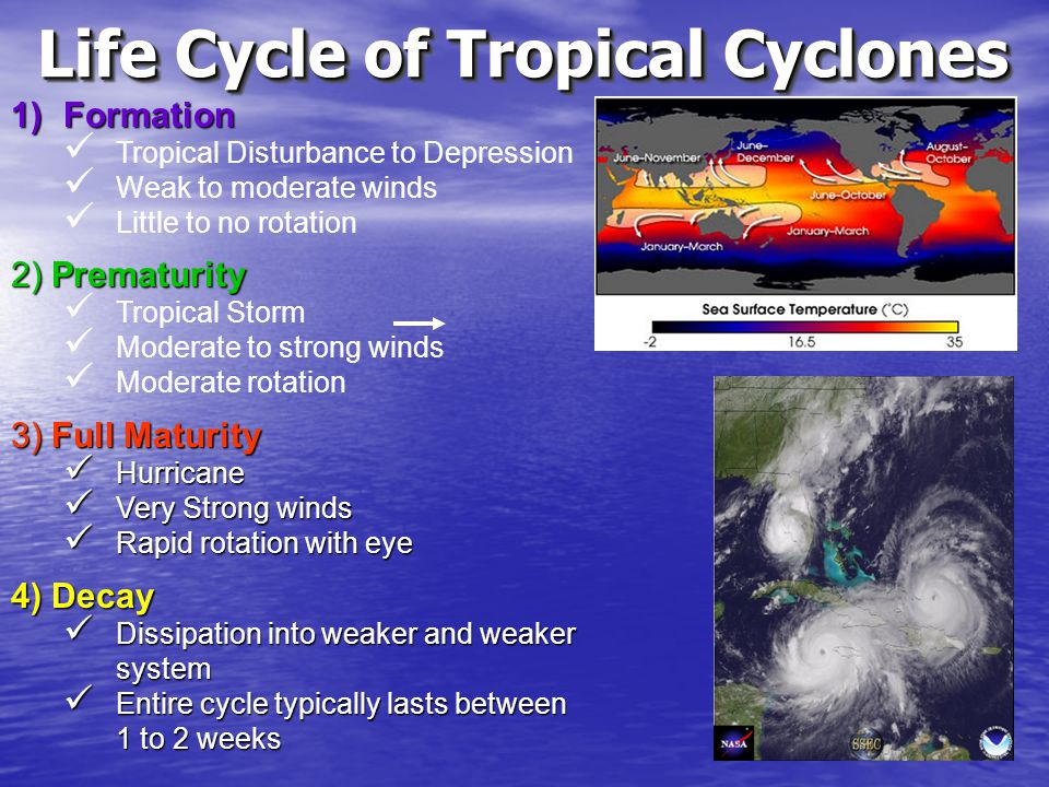 Life Cycle of Tropical Cyclones 1)Formation Tropical Disturbance to Depression Weak to moderate winds Little to no rotation 2) Prematurity Tropical St