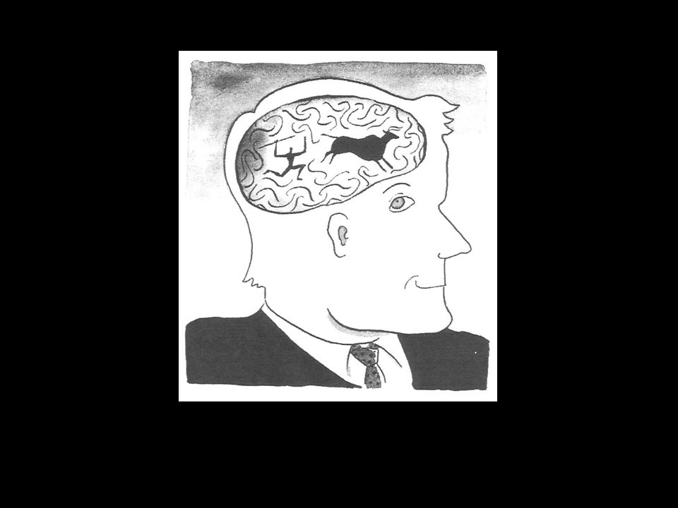 Outline: Our mind & our institutions Cognitive specialists Rationality (decisional mechanism) Cooperation (main ambit of interest) Institutions Modular mind Instinctive Co-opt instincts Maladapted mind Ecological Fill adap- tation gap