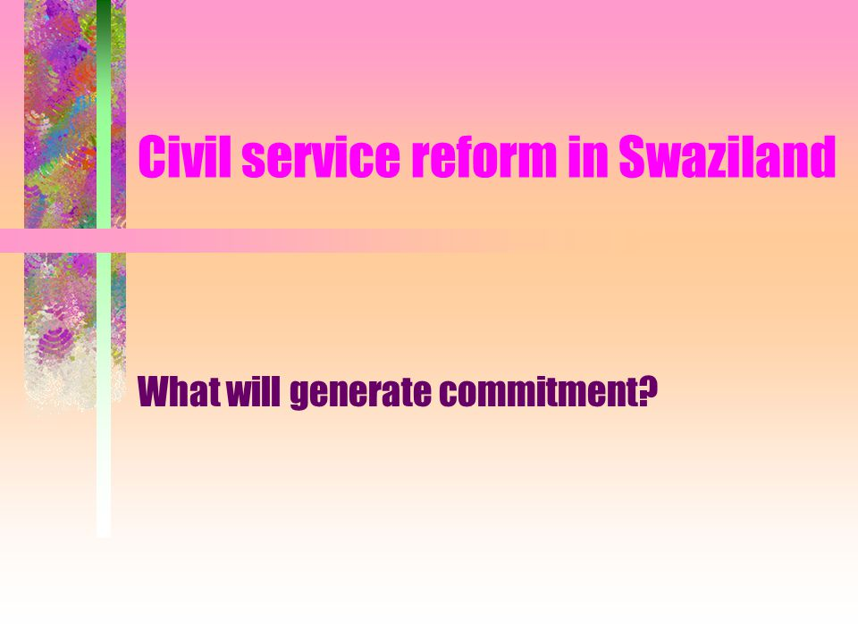 Swaziland (not Switzerland!) Landlocked, bordered by South Africa and Mozambique Fast-growing population of 900,000 112 th out of 174 countries on UN Human Development Index (in 2000) Lower middle-income country: stagnant GDP of $1400 A monoethnic monarchy Low donor and debt dependency