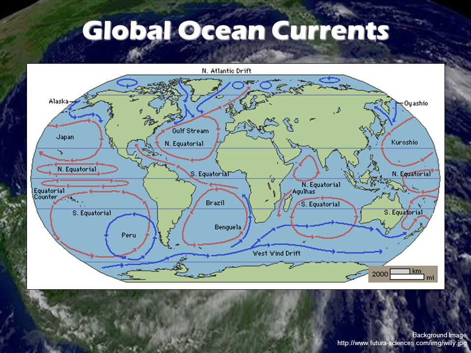 Background Image http://www.futura-sciences.com/img/willy.jpg Global Ocean Currents