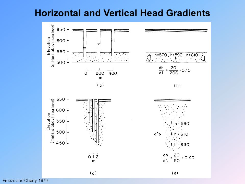 Horizontal and Vertical Head Gradients Freeze and Cherry, 1979.