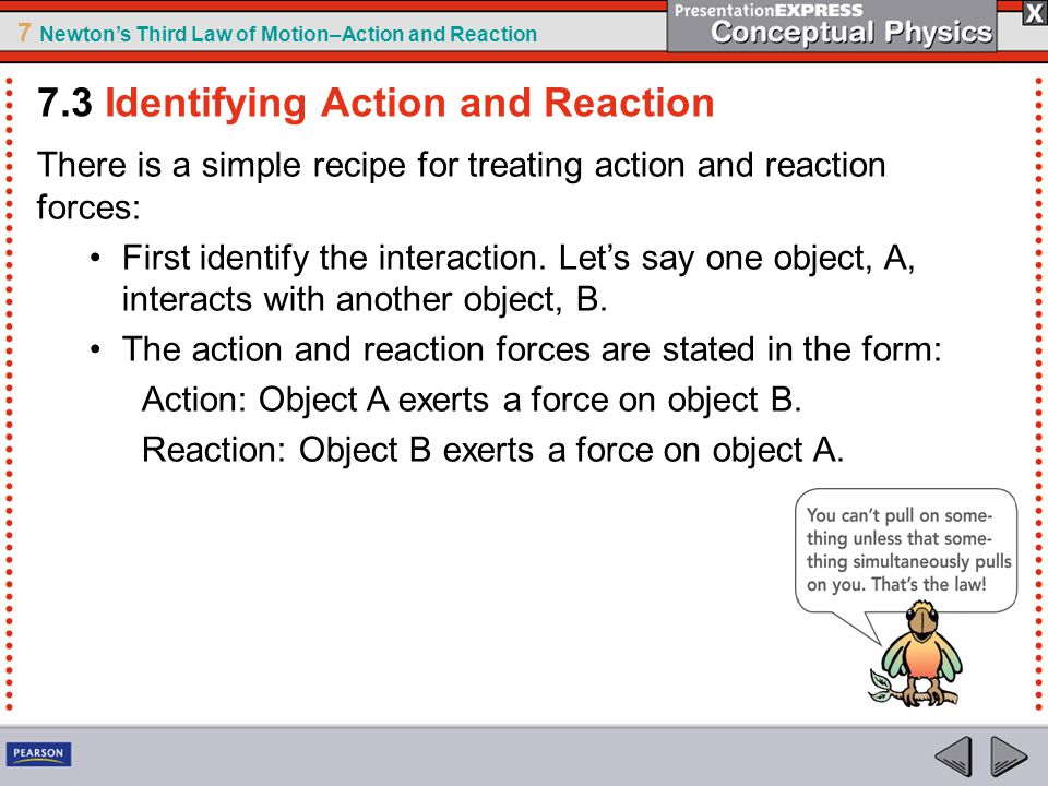 7 Newton's Third Law of Motion–Action and Reaction There is a simple recipe for treating action and reaction forces: First identify the interaction. L