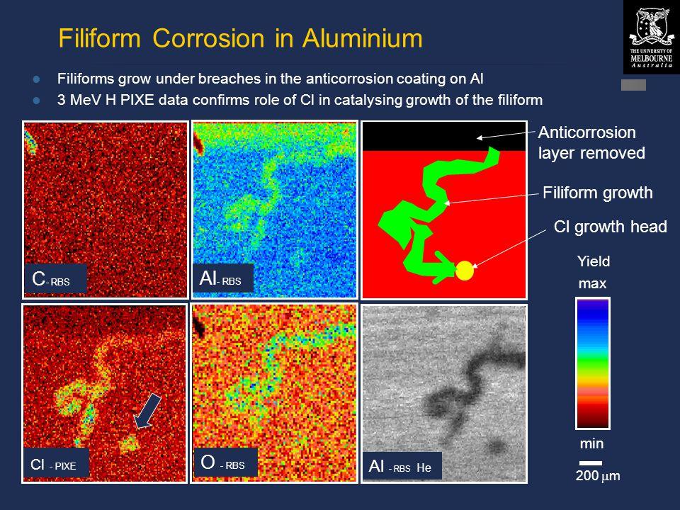 © David N. Jamieson 1999 Filiform Corrosion in Aluminium 200  m Yield max min Anticorrosion layer removed Filiform growth C - RBS Al - RBS He Cl - PI