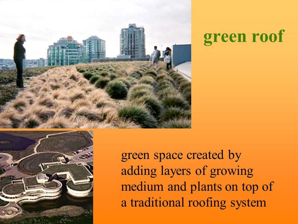 green roofs and vernacular architecture