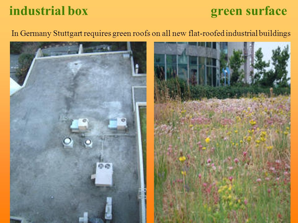 layers of a green roof system the plants, often specially selected for particular applications an engineered growing medium, which may not include soil, a landscape or filter cloth contain the roots and the growing medium, while allowing for water penetration, a specialized drainage layer, sometimes with built-in water reservoirs, the waterproofing / roofing membrane, with an integral root repellent the roof structure, with traditional insulation either above or below.