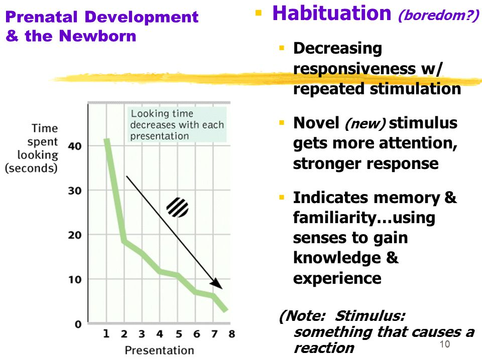 11 Prenatal Development and the Newborn Once habituated to old stimulus, newborns preferred gazing at a new one (New experience…)