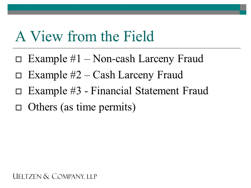 A View from the Field  Example #1 – Non-cash Larceny Fraud  Example #2 – Cash Larceny Fraud  Example #3 - Financial Statement Fraud  Others (as time permits)