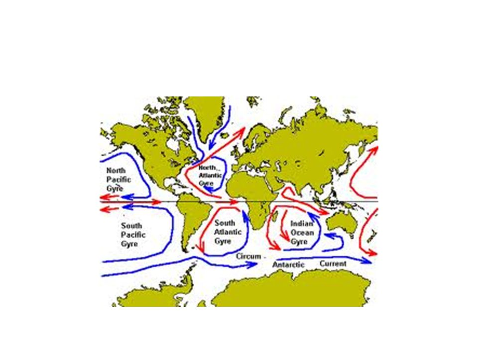 2.Increase salinity by evaporation and the formation of sea ice.