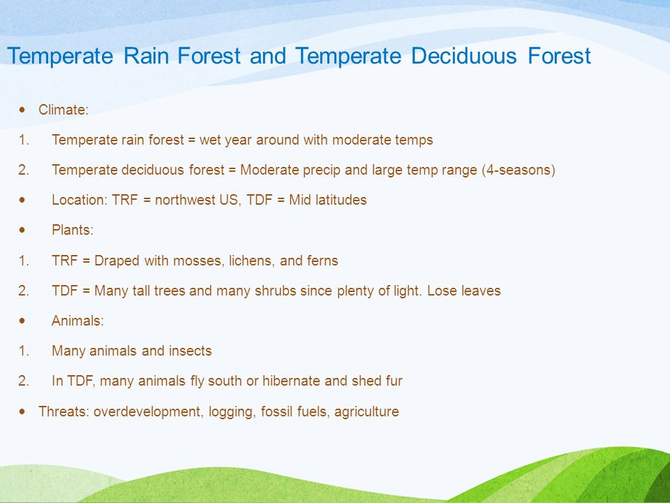 Temperate Rain Forest and Temperate Deciduous Forest Climate: 1.Temperate rain forest = wet year around with moderate temps 2.Temperate deciduous forest = Moderate precip and large temp range (4-seasons) Location: TRF = northwest US, TDF = Mid latitudes Plants: 1.TRF = Draped with mosses, lichens, and ferns 2.TDF = Many tall trees and many shrubs since plenty of light.