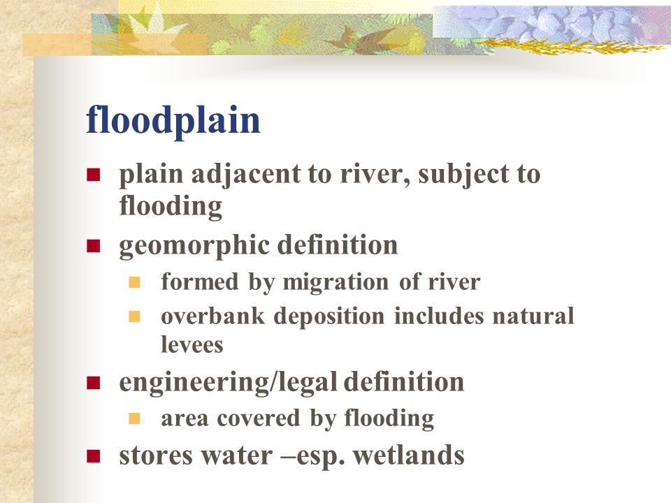 floodplain plain adjacent to river, subject to flooding geomorphic definition formed by migration of river overbank deposition includes natural levees