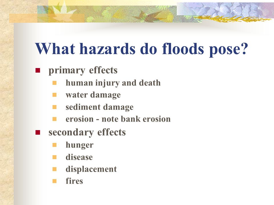 What hazards do floods pose? primary effects human injury and death water damage sediment damage erosion - note bank erosion secondary effects hunger