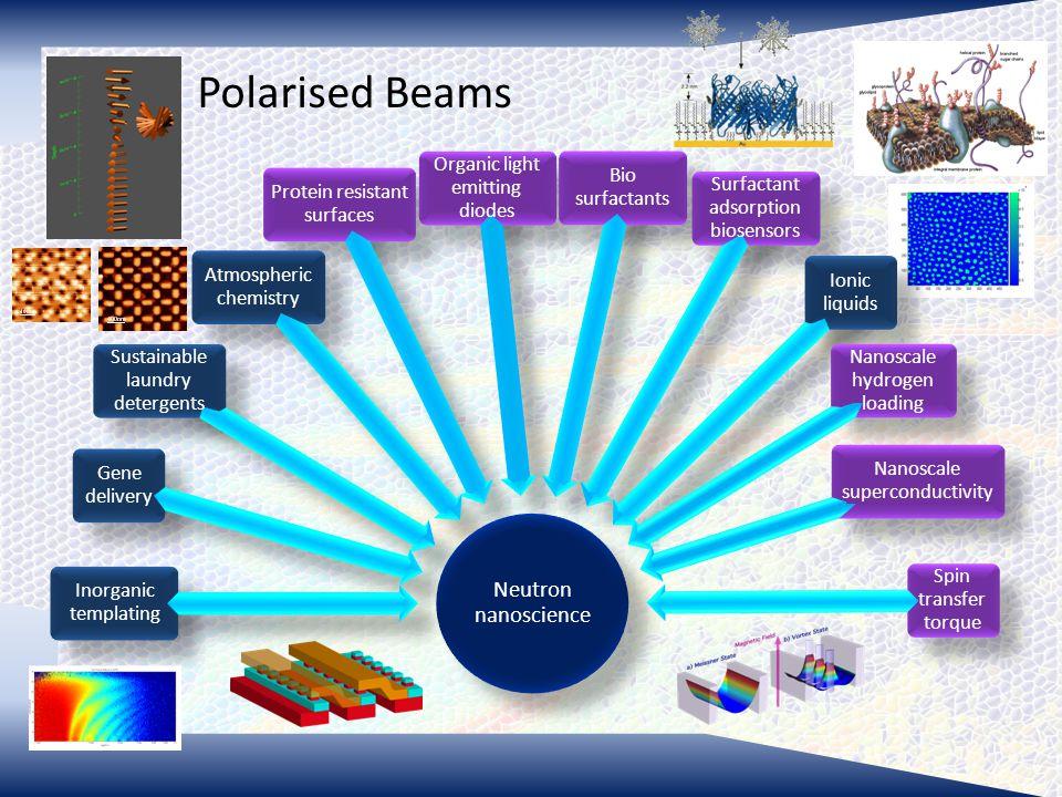 Polarised Beams