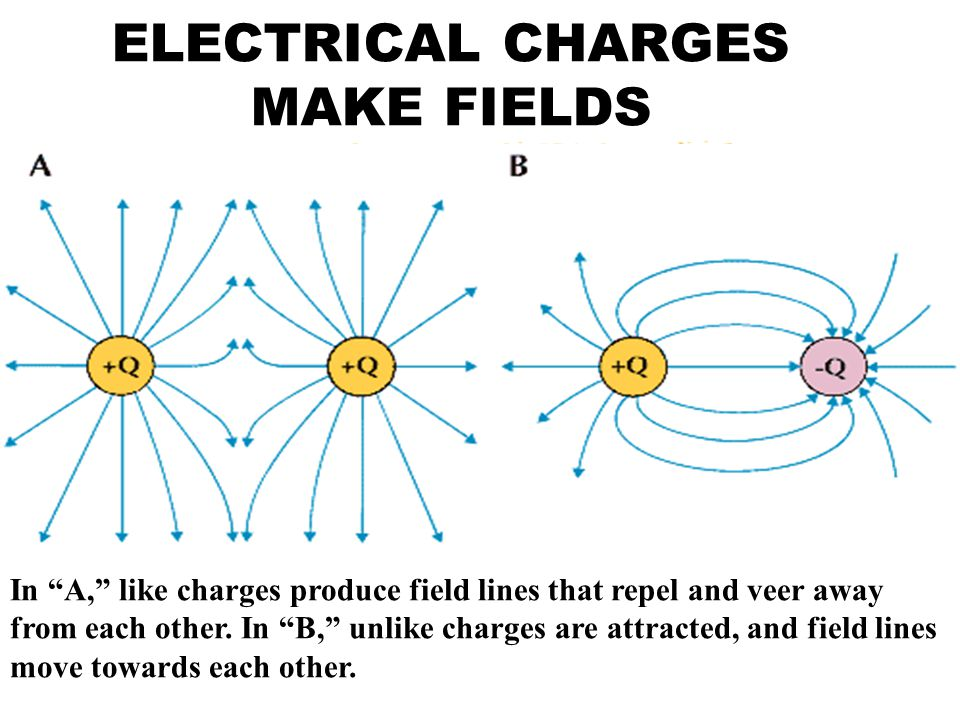 ELECTRICAL CHARGES MAKE FIELDS In A, like charges produce field lines that repel and veer away from each other.